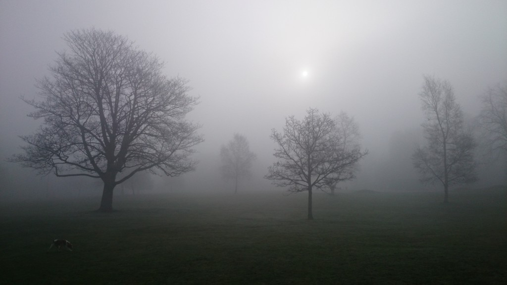 foggy morning west Park Macclesfield