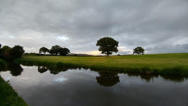 Early spring morning near Buglawton
