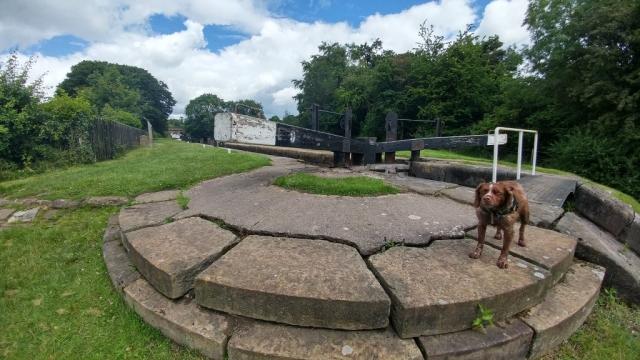 Lock 9 at Bosley Locks