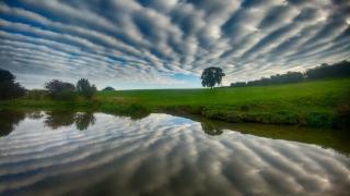 Surreal Skies