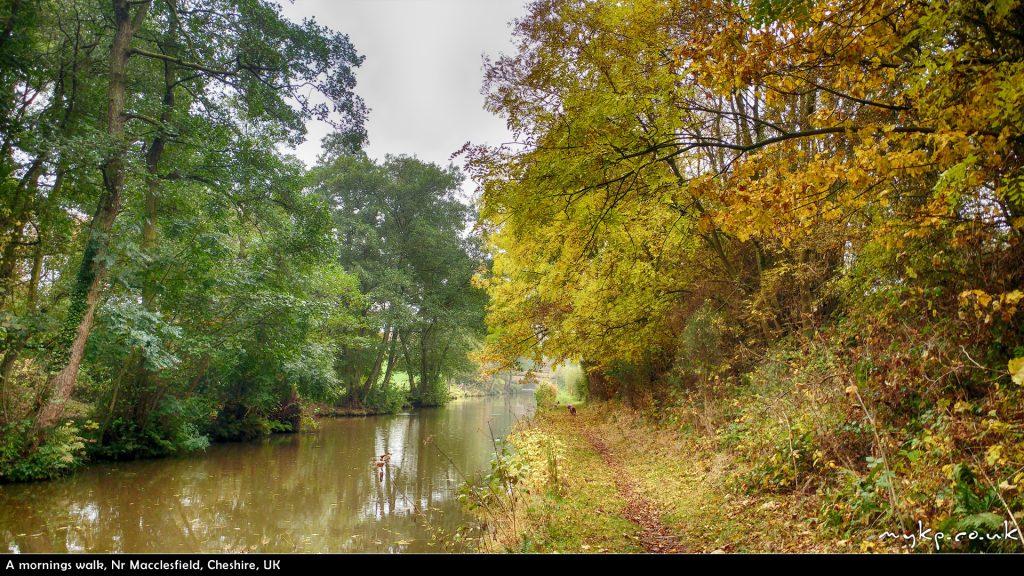 a-mornings-walk-by-mykpcouk