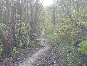 Biddulph Valley Way