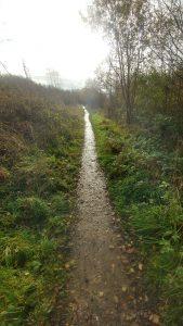 Biddulph Valley Way near Brown Lees